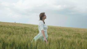 Muchacha rusa joven hermosa entre las espiguillas verdes altas del trigo en el campo Ella recoge las espiguillas en paquetes El e almacen de video