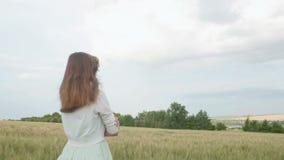 Muchacha rusa joven hermosa entre las espiguillas verdes altas del trigo en el campo Mujer joven que disfruta del verano, armonía almacen de video