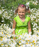 Muchacha sonriente en un campo de margaritas Fotografía de archivo