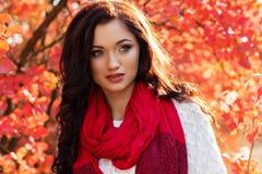 Muchacha sonriente hermosa en hojas de otoño coloridas Fotos de archivo libres de regalías