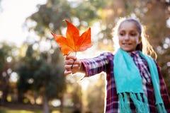 Muchacha sonriente que celebra la hoja del otoño en el parque Imagen de archivo