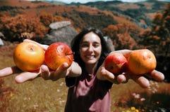 Muchacha sonriente que sostiene manzanas en su mano Fotografía de archivo libre de regalías