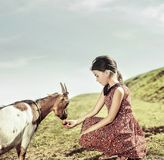 Muchacha tranquila, alegre que alimenta una cabra Fotografía de archivo libre de regalías