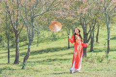 Muchacha vietnamita hermosa Imagen de archivo