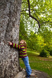 Muchacha y árbol Fotos de archivo