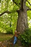 Muchacha y árbol Imagen de archivo