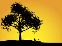 Muchacha y árbol Imagenes de archivo