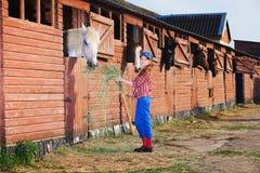 Muchacha y caballo Imágenes de archivo libres de regalías