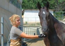 Muchacha y caballo hermosos Imagen de archivo