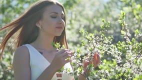 Muchacha y cereza floreciente La muchacha se está colocando en cereza floreciente del jardín de la forma de vida de la naturaleza almacen de metraje de vídeo