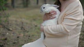Muchacha y conejo blanco almacen de video