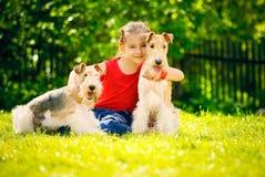 Muchacha y dos terrieres de zorro Imagen de archivo