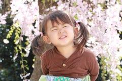 Muchacha y flores de cerezo japonesas Imágenes de archivo libres de regalías