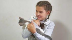 Muchacha y gatito el gatito está jugando a la muchacha adolescente de las mordeduras que sostiene el gatito en sus manos interior almacen de metraje de vídeo