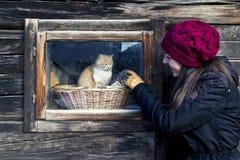 Muchacha y gato Fotos de archivo