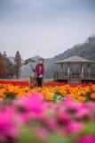 Muchacha y golden retriever en las flores Foto de archivo libre de regalías