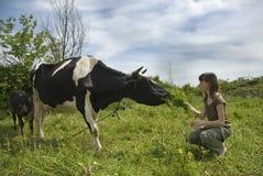 Muchacha y la vaca Fotografía de archivo libre de regalías