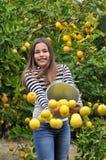 Muchacha y limones Foto de archivo