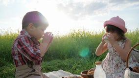 Muchacha y muchacho con la comida en la naturaleza, los niños felices en aire fresco, el pan y los productos lácteos comiendo, du metrajes