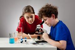 Muchacha y muchacho que usa el microscopio Fotografía de archivo libre de regalías