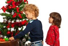 Muchacha y muchacho sorprendentes con el árbol de navidad Imágenes de archivo libres de regalías