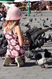 Muchacha y palomas Fotos de archivo libres de regalías