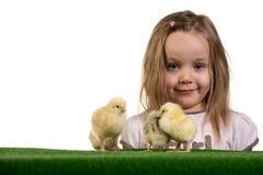 Muchacha y pequeños pollos 3 Imagen de archivo libre de regalías