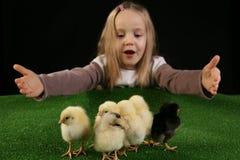 Muchacha y pequeños pollos 4 Fotografía de archivo libre de regalías