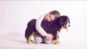 Muchacha y perrito de un perro de pastor bernese almacen de metraje de vídeo