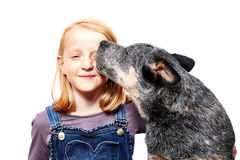 Muchacha y perro Fotos de archivo