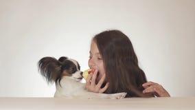 Muchacha y perro adolescentes hermosos Toy Spaniel Papillon continental que come la manzana roja fresca sabrosa en el fondo blanc Imagen de archivo