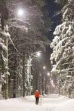 Muchacha y perro en el bosque del invierno cubierto con nieve imagen de archivo