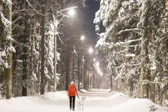 Muchacha y perro en el bosque del invierno cubierto con nieve Foto de archivo