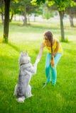 Muchacha y perro en el césped Fotografía de archivo libre de regalías