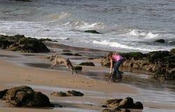 Muchacha y perro en la playa Fotos de archivo libres de regalías