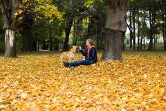 Muchacha y perro en parque del otoño Imagen de archivo libre de regalías