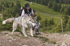 Muchacha y perro esquimal siberiano Imágenes de archivo libres de regalías