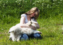Muchacha y perro - lazo cariñoso Fotografía de archivo libre de regalías