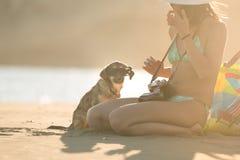 Muchacha y perro que se divierten en la playa Perro perdido descuidado lindo adoptado cuidando a la mujer Gafas de sol que desgas Fotografía de archivo libre de regalías