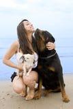 Muchacha y perros Imagenes de archivo