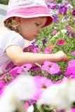 Muchacha y petunia Imagen de archivo libre de regalías