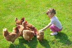 Muchacha y pollos Imágenes de archivo libres de regalías