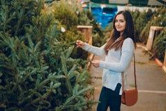 Muchacha y árbol de navidad Imágenes de archivo libres de regalías