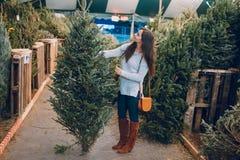 Muchacha y árbol de navidad Imagen de archivo