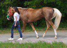 Muchacha y su caballo. Fotografía de archivo