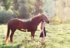 Muchacha y su caballo en el campo iluminado por el sol Foto de archivo