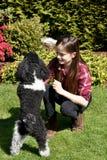 Muchacha y su pequeño perro Imagen de archivo libre de regalías