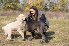Muchacha y sus perros Imagen de archivo libre de regalías