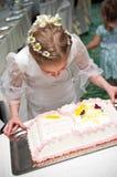 Muchacha y torta Fotografía de archivo
