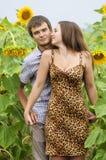 muchacha y un hombre joven en el campo de girasoles Imagen de archivo